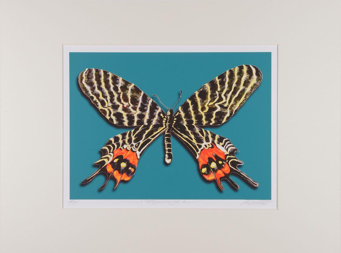 Thomas Gatzemeier | Flügelauge | mittel