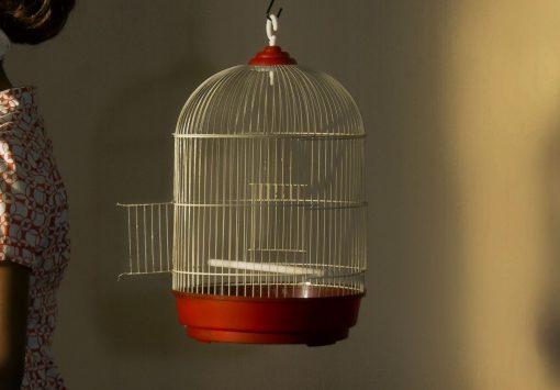 Horst Kistner | the cage | Ausschnitt 2