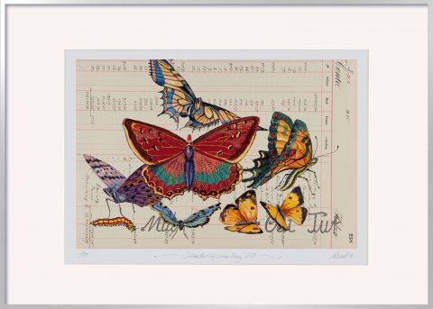 Thomas Gatzemeier Schmetterlingssammlung238 limitiert mit Rahmen