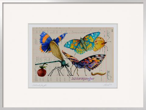 Thomas Gatzemeier Schlankjungfer Bild mit Libelle und Schmetterlingen