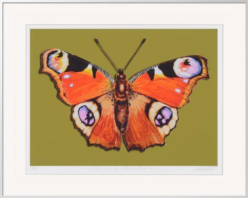 Thomas Gatzemeier Peacock-Butterfly ist eine Grafik