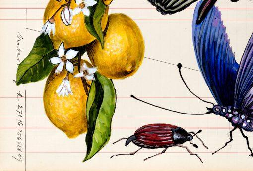 Thomas Gatzemeier Irrtümliche Fruchtfolge Detail 3