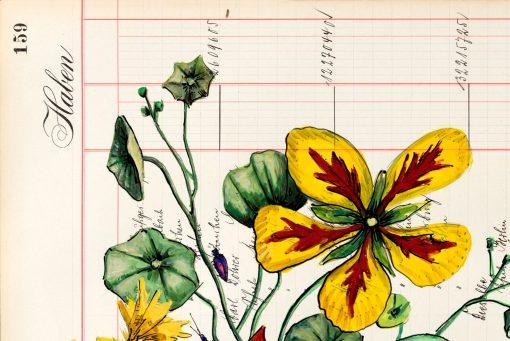 Thomas Gatzemeier Herbstpilzzeit Detail 1