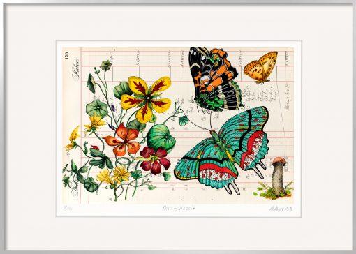 Thomas Gatzemeier Herbstpilzzeit ist eine Grafik mit Schmetterlingen, Blumen und einem Pilz