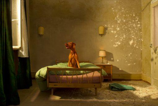 Kistner Postkarten Berlin33 mit Hund auf dem Bett