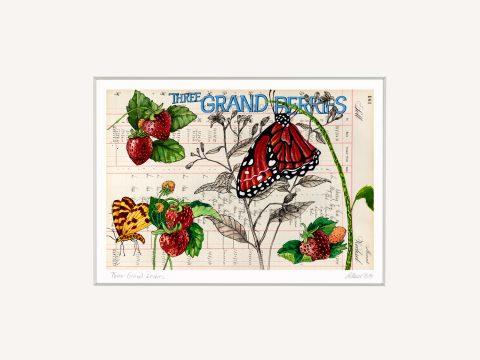 Thomas Gatzemeier Three Grand Berries 30 x 40 cm