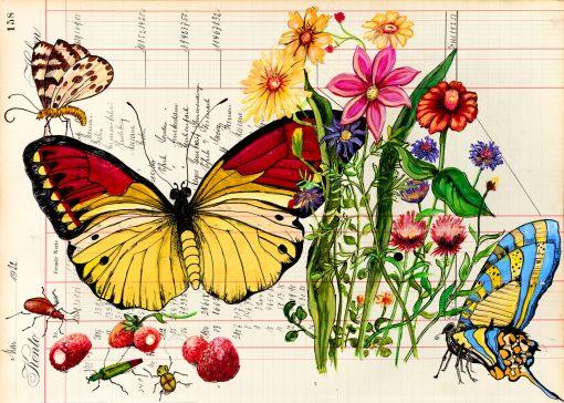 Frühling Sommer Schmetterlinge Früchte Postkarten Blütenwunder und mehr