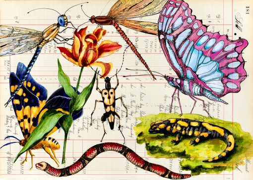 Garten Eden ist eine Natur Postkarte mit Tieren und Schmetterlingen
