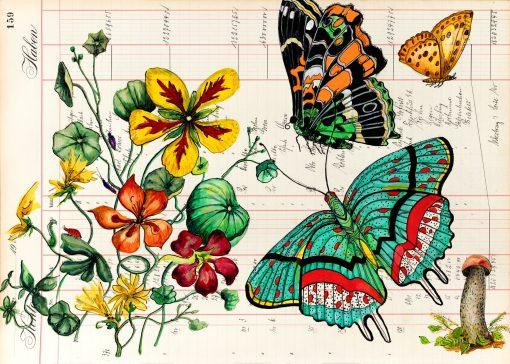 Herbstpostkarte mit Falter und Pilz
