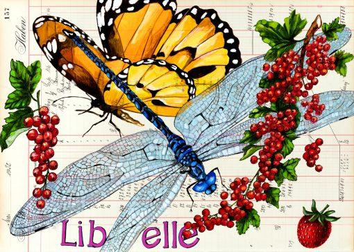 Postkarten mit Libellen und Früchten im Standardformat